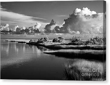 On The Sound Side Canvas Print by Dan Carmichael