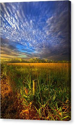 On Your Way Back Home Canvas Print by Phil Koch