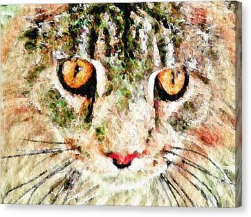 One Cool Cat Canvas Print by Terry Mulligan
