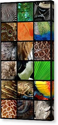 One Day At The Zoo Canvas Print by Michelle Calkins