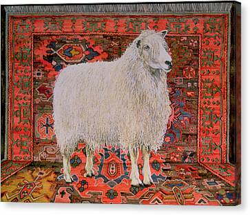 One Hundred Percent Wool Canvas Print by Ditz