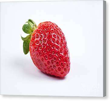 One Red Strawberry Canvas Print by Chris Smith
