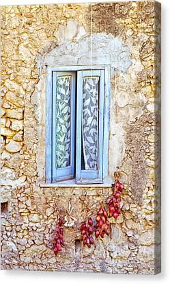 Onions And Garlic On Window Canvas Print by Silvia Ganora