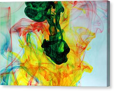 Ooh The Colors Man The Colors Canvas Print by Michael Ledray