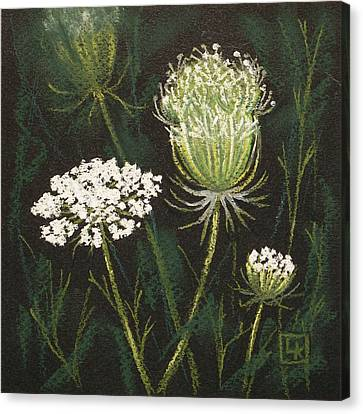 Opening Lace Canvas Print by Lisa Kretchman