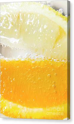 Orange And Lemon In Cocktail Glass Canvas Print by Jorgo Photography - Wall Art Gallery
