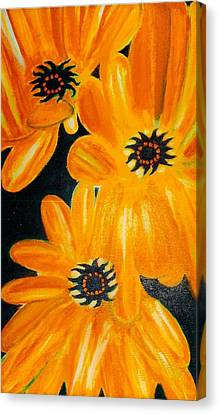 Orange Delight Canvas Print by Robert Bray