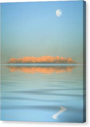 Orange Fog Canvas Print by Jerry McElroy