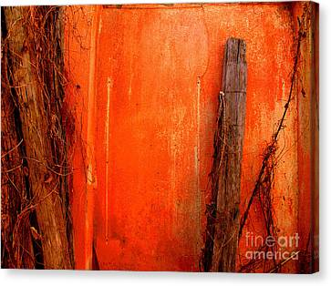 Orange Wall By Michael Fitzpatrick Canvas Print by Mexicolors Art Photography