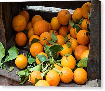 Oranges For Sale In The Souk, Fes Canvas Print by Panoramic Images