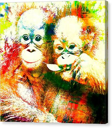 Orangutan Canvas Print by Stacey Chiew