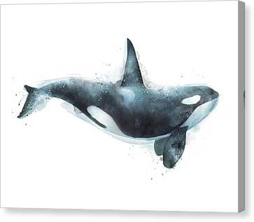 Orca Canvas Print by Amy Hamilton