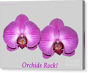 Orchids Rock Canvas Print by Susan Wiedmann
