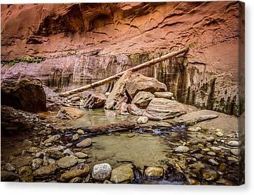 Orderville Canyon Zion National Park Canvas Print by Scott McGuire