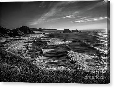 Oregon Coast At Sunset Canvas Print by Jon Burch Photography