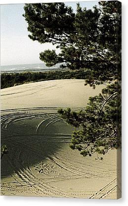 Oregon Dunes 3 Canvas Print by Eike Kistenmacher