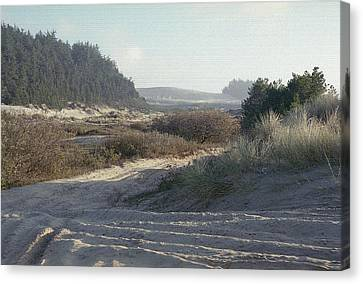 Oregon Dunes 5 Canvas Print by Eike Kistenmacher