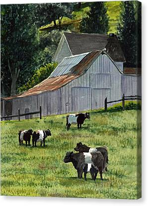 Oreo Cows In Napa Canvas Print by Gail Chandler