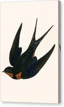 Oriental Chimney Swallow Canvas Print by English School