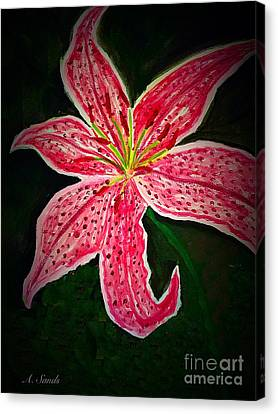 Oriental Lily Canvas Print by Anne Sands