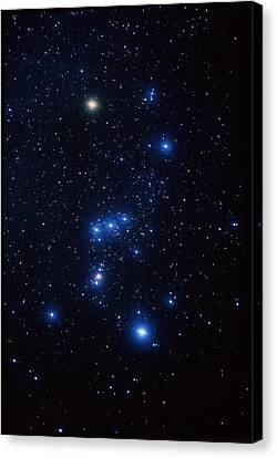 Orion Constellation Canvas Print by John Sanford