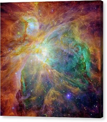 Orion Nebula Canvas Print by Mark Kiver