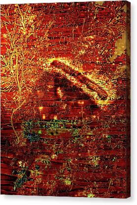Osterreich Canvas Print by David BERNARD