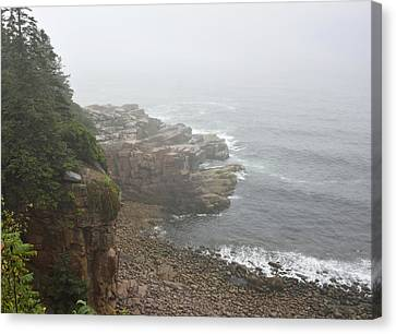 Otter Cliffs - Acadia National Park Maine Canvas Print by Brendan Reals