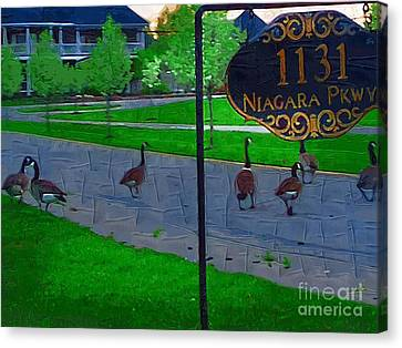 Out For A Stroll Canvas Print by Deborah MacQuarrie