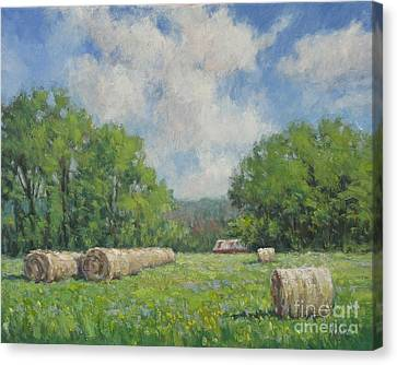 Out My Back Door Canvas Print by Vickie Fears