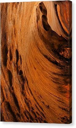 Outback Cavern Canvas Print by Mike  Dawson