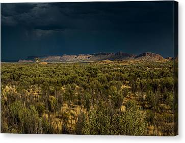 Outback Storm Canvas Print by Racheal Christian