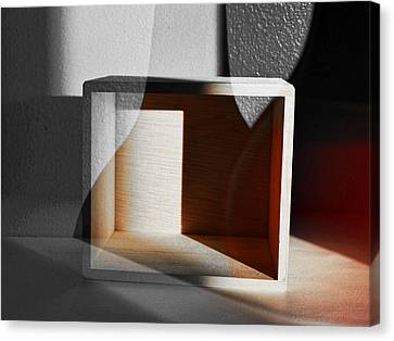 Outside The Box Canvas Print by Tom Druin