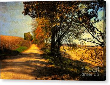 Over My Shoulder Canvas Print by Lois Bryan