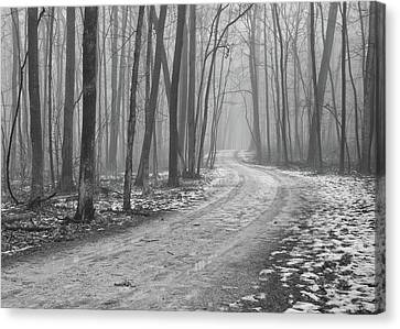 Over River And Through Woods Canvas Print by N. Vivienne Shen Photography