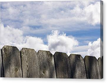 Over The Fence Canvas Print by Rebecca Cozart