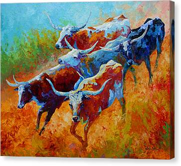 Over The Ridge - Longhorns Canvas Print by Marion Rose
