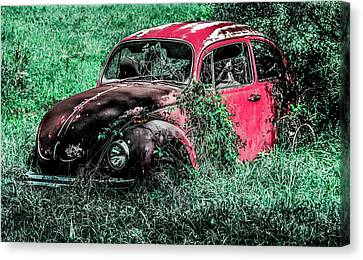 Overgrown Bug Canvas Print by Jeremy Rickman