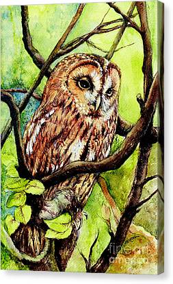 Owl From Butterfingers And Secrets Canvas Print by Morgan Fitzsimons