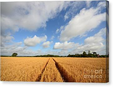 Oxfordshire Canvas Print by Stephen Smith