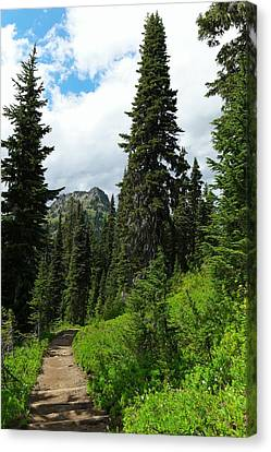 Pacific Crest Trail Towards American Ridge Canvas Print by Jeff Swan