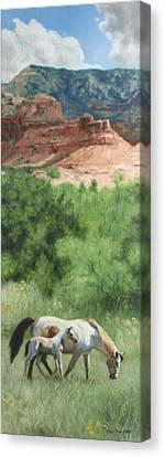 Paint Horses At Caprock Canyons Canvas Print by Anna Rose Bain