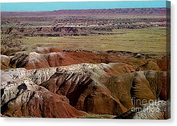 Painted Desert In Arizona Canvas Print by Ruth  Housley