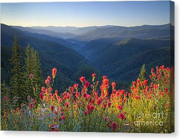 Painted Forest Canvas Print by Idaho Scenic Images Linda Lantzy