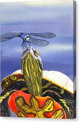 Painted Turtle And Dragonfly Canvas Print by Catherine G McElroy