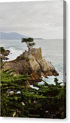 Painting Lone Cypress Monterey Canvas Print by Barbara Snyder