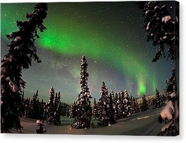 Painting The Sky With The Northern Lights Canvas Print by Mike Berenson
