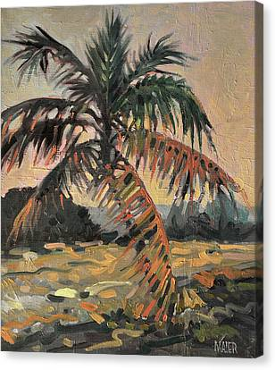 Palm Canvas Print by Donald Maier
