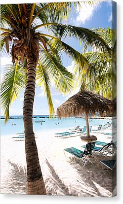 Palm Trees And Palapa Canvas Print by George Oze