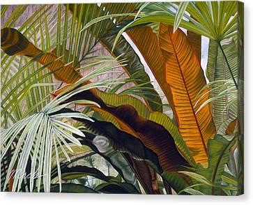 Palms At Fairchild Gardens Canvas Print by Stephen Mack
